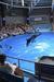 【エプソン 品川アクアスタジアム】※一時休館。2015年夏にリニューアルオープン!
