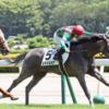 2020年②  1月12日京都競馬場の全レースの予想と結果