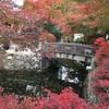 京都の旅①