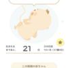 【37w2day】正産期突入/妊娠中の過ごし方