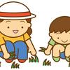 除草剤をまいたあと、子供に気を付けてあげたい事とは?