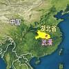 新型ウイルス 中国で 死者2441人に、中国と日本以外の感染 29の国と地域で887人!