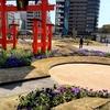 「ひろしま はなのわ 2020」今日から開催されました。旧広島市民球場跡地でやってますよ。津田投手を偲んでみてください。