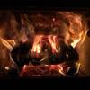 薪の火持ち検証【椎】ツブラジイ