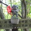 【登山初心者におすすめの山】日本三百名山 天下の秀峰 金時山 足柄峠から登るコースの紹介