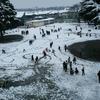 念願の雪遊び