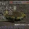 214食目食後「第56回西日本大濠花火大会の後。」-西日本テレビより- 福岡ご当地
