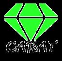 出張ワークショップのCARATが行くブログ