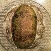 抹茶・黒豆パン。