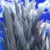 ゾイドワイルド ZERO 第44話 雑感 ゼログライジスさん、無数のカッターで防護壁を張り巡らせる。