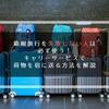 箱根旅行を失敗しない人は必ず使う! キャリーサービスで荷物を宿に送る方法を解説