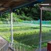 岩ノ沢養魚(新潟県越後湯沢)