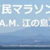 レース|第7回湘南藤沢市民マラソンに相棒が参戦。大会結果・会場の様子など