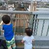 真夏のお散歩は駅の陸橋で夕涼み〜1歳娘の鉄子デビュー〜