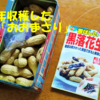 落花生物語!ジーマミー豆腐!三文小説♪