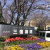 4984 世田谷公園の汽車