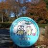 北風が吹く11月11日に公園で蜻蛉が名残惜しいかのように日向ぼっこ…