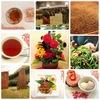 サンデーティータイム|福建省紅茶の旅