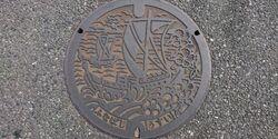 千葉県船橋市のマンホール