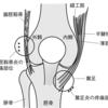 腸脛靭帯炎(ちょうけいじんたいえん)対策
