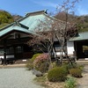 鎌倉海蔵寺2020春.このお寺でよく知られているハナカイドウは,咲き始めたところ.開花宣言直後といった趣き.本堂の裏の書院の裏山は鎌倉らしいとてもよい雰囲気.遠景の桜は満開に見えます.カイドウ以外は低木が多いこのお寺.最も美しいと感じたのは,山門近くのユキヤナギ.このユキヤナギ,ハナカイドウと結構近い植物なんですね.