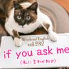 【週末英語#282】「if you ask me」は「私に言わせれば」と意見を述べたい時に使う
