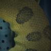 オオアナコンダ Eunectes murinus