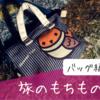 私が持ち歩いている旅のバッグについて。たとえ壊れても、500円のポシェットを愛用しています。