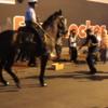 騎馬警察の馬が曲を聞いて高揚!披露する足の運びとは?