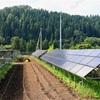 ソーラーシェアリングは失敗しやすい?成功する作物選びがポイント!
