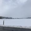 一面雪景色です