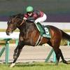 11/19(日)のマイルCS、1着がありそうな馬。
