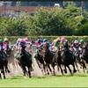 6.27  阪神競馬 注目馬