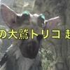 【人喰いの大鷲トリコ】最速攻略・攻略チャートまとめ