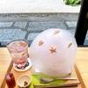 【然花抄院京都室町本店】京都烏丸御池にある築300年の京町家の魅力🌿✨