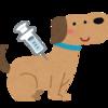 【可愛い愛犬の健康のために】犬の混合ワクチンの種類と予防できる病気について