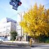にちよ記:車を返したあと家に戻るまでの道中&大塚屋主催のワインイベントに参加