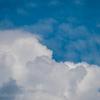🦜野鳥の回【187】梅雨明けたかな鳥と鉄道の見える土手