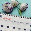 ブログ開始8ヵ月目の運営記録 【更新サボっていても意外と大丈夫?】