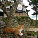 photos_日本の史跡と景色