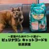 【愛猫のためのフード選び】ピュリナワンキャットフードの特徴・種類・口コミを徹底調査!