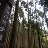 嵐山から高雄まで徒歩の旅。東海自然歩道をゆく