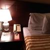 【ウズベキスタンへの旅②】タシケントのランドマーク的存在、ホテルウズベキスタンに到着。