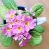 彼女・妻へのホワイトデーお返しはお花が嬉しい!おしゃれで可愛いフラワーギフト7選