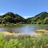 鏡池(三重県紀北)
