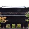 三門、水路閣、もみじ、法堂、方丈襖絵、庭園など見所多い南禅寺を散策 (Kyoto, Nanzenji)