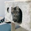 初めて家に猫を迎えるための準備と過ごし方