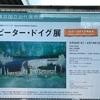 【展覧会】 ピーター・ドイグ展@竹橋・東京国立近代美術館のレポート(2020/8/1訪問)