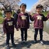 藤田川に花見に行ってきました