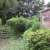[河川][歴史] 昔の荒川探索行(7)大地に刻まれた古隅田川自然堤防を歩く…